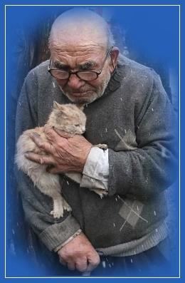 Старик, жалость, котенок, забота