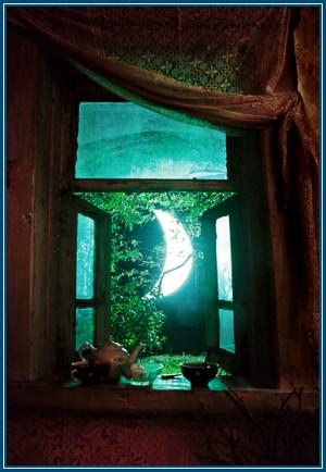 Луна, месяц, в окне