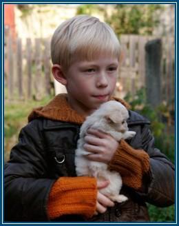 Мальчик, и щенок