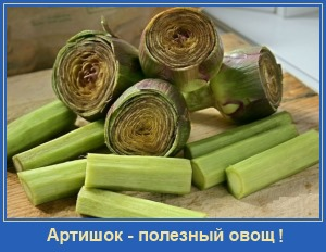 Артишок - полезный овощ