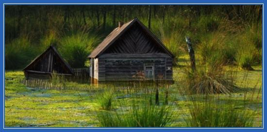 Деревенская изба, дом, болото