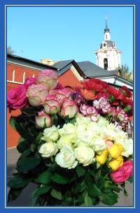 Цветы, к мощам блаженной Матроны