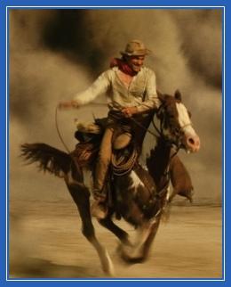 всадник, ковбой, кавбой, конь