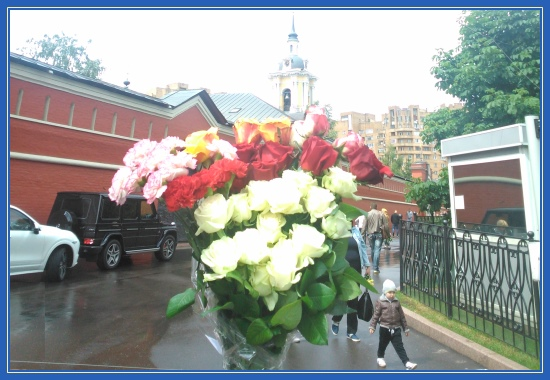 Цветы, Покровский монастырь, святая Матрона