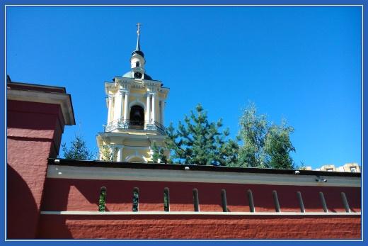 Стены Покровского монастыря, сосна
