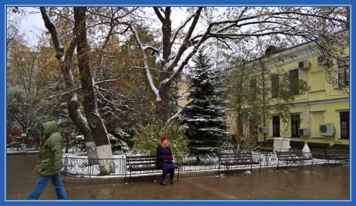 Ели Покровского монастыря