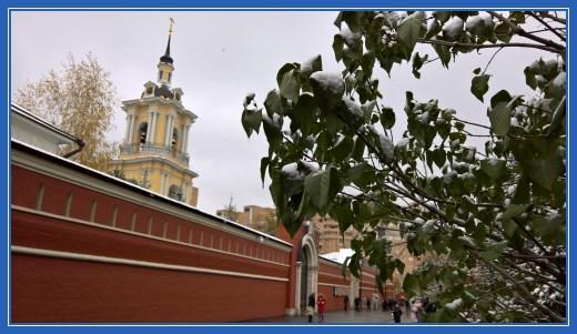 Покровский монастырь, снег, деревья