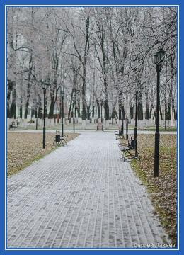 Парк, ноябрь, декабрь