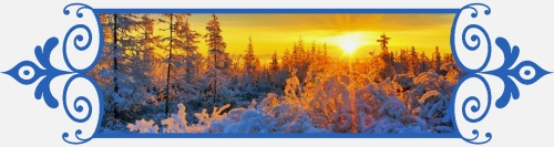 Зимнее утро в лесу, 8