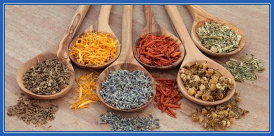 Народные средства, медицына, семена