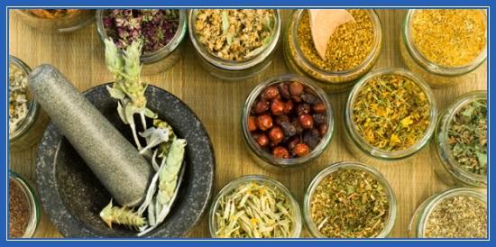 Народные средства, методы, лечение, семена