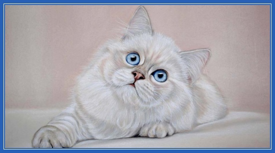 Картины Марии Емельяновой. Кот, кошка