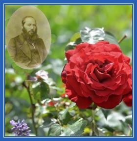 Афанасий Фет. Осенняя Роза