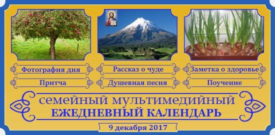 Семейный православный календарь на 9 декабря