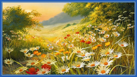 Цветочный летний луг!
