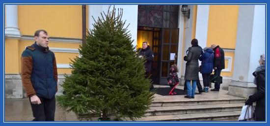 Рождественская елочка у храма