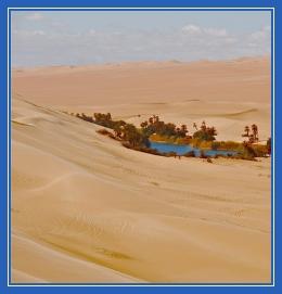 Пустыня, оазис