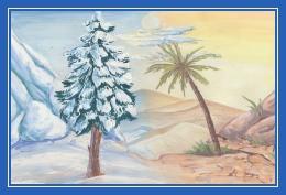 Сосна и пальма, зима и лето, снег