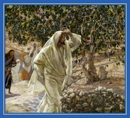 Бесплодная смоковница, Иисус Христос