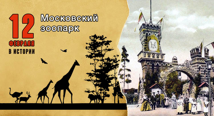 12 февраля. Московский зоопарк