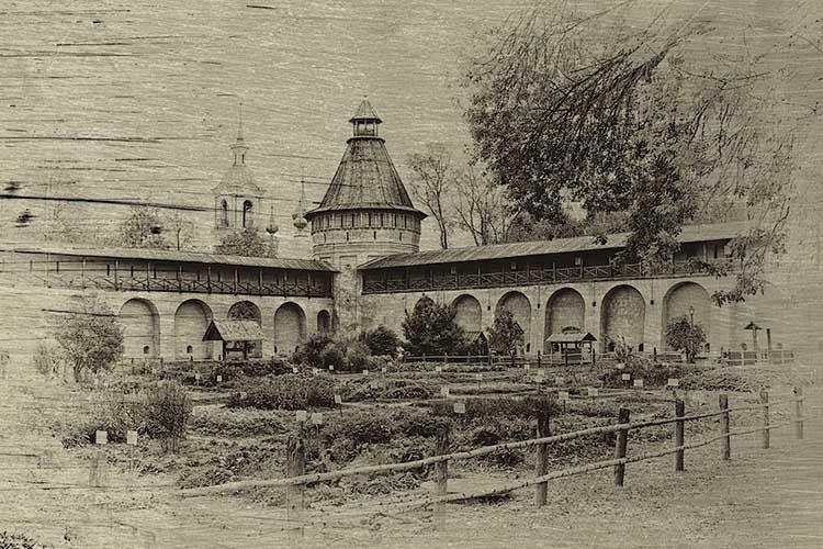 Ботанический сад Московского университета Аптекарский огород