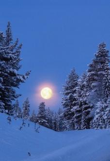 Зима в поэзии искрится !