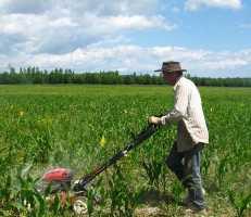 Притча о мудром фермере