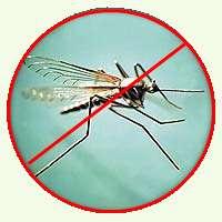 Натуральная защита от комаров