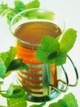 Биохимия чая. Интересные факты