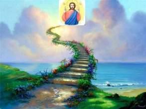Дорога к вечной жизни