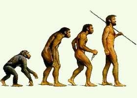 Почему Православная Церковь против теории эволюции?