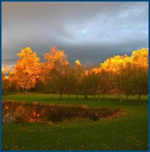 Пасмурная осень