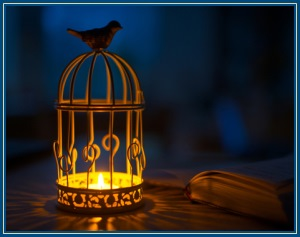 Птичка, клетка
