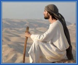 В пустыни