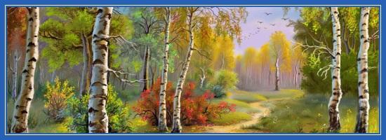 Березки, березы, лес