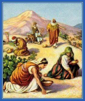 Манна Небесная, хлеб