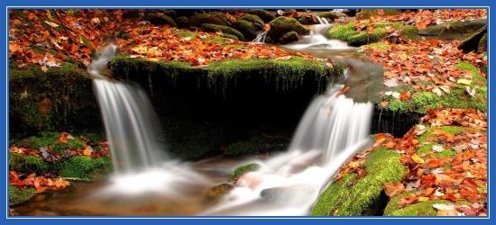 Два ручья, ручьи, ручеек, водопад, вода, осень