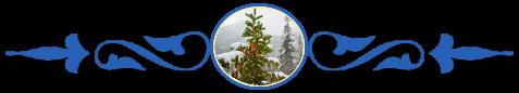 Зима, елка, 8