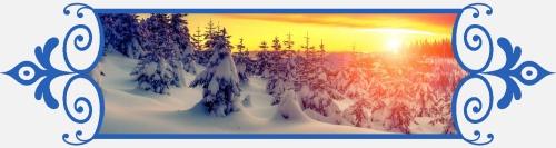 Зимний лес, 8