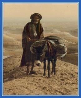 Осел, поселянин, крестьянин