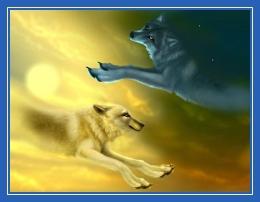 Волки, добро и зло, борьба