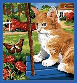 Кот, весна, бабочка