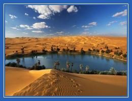 Оазис, пустыня