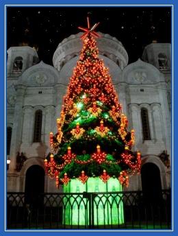 Рождественская елка, у Храма