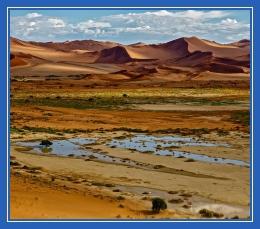 Пустыня, оазис, песок