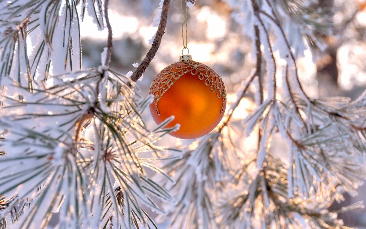 Рождественский шарик на еловой ветке )