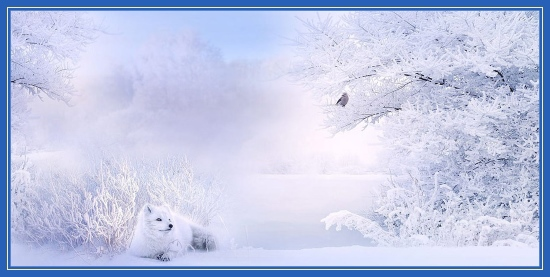 Зимняя фотография, зима