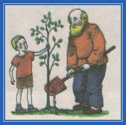 Дедушка и внук, сажают яблоню