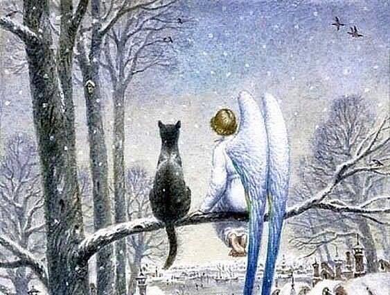 Кот и Ангел | Сказка