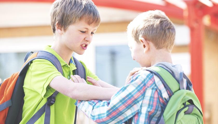 Давать ли сдачи   Воспитание детей